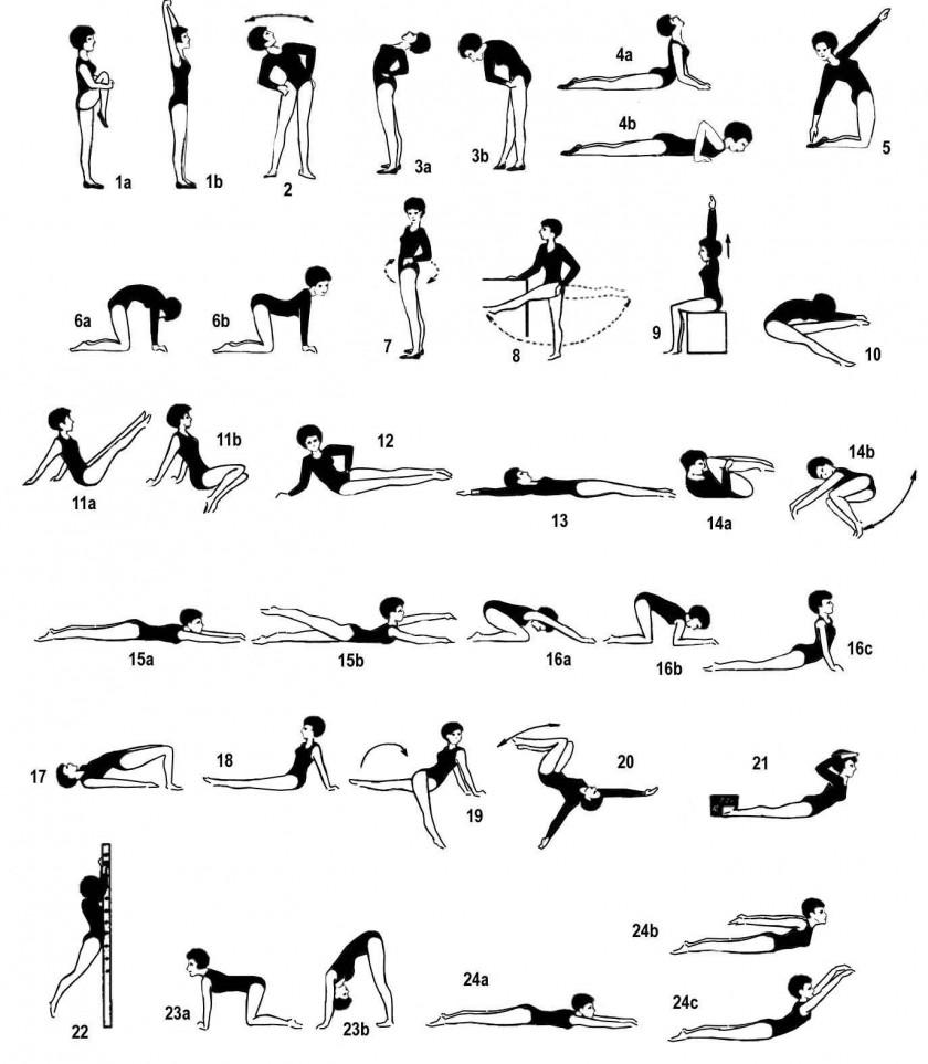 упражнения для спины в домашних условиях картинки
