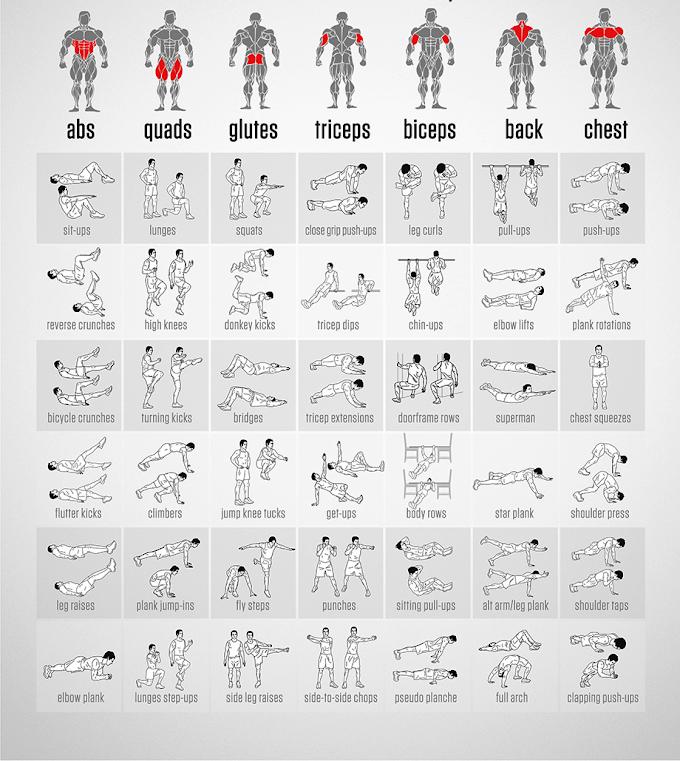упражнения на все группы мышц с картинками фотоальбомы для школьников